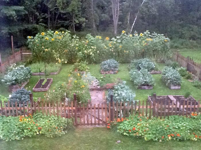 Garden_Aug16 full