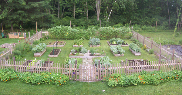 Garden_July10 Panorama_small