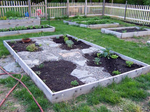 Garden_May13_herbs