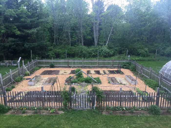 garden-all-planted-may24